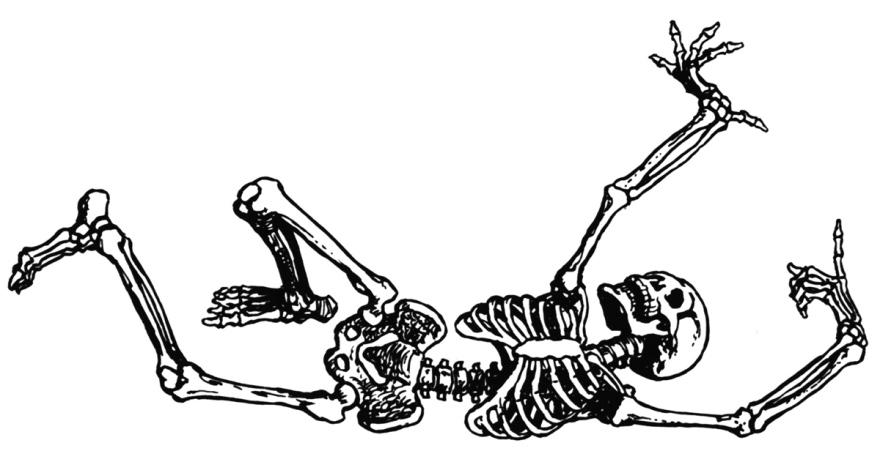 Free-skeleton-clipart-public-domain-halloween-clip-art-images